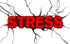 Study: Cannabinoids Prevent Long-Term Negative Effects of Severe Stress Exposure
