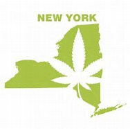There is still time to apply for a hemp license in NY