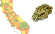 Marijuana Sales Becomes Legal in California Next Month