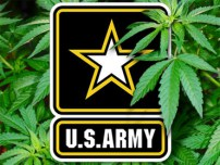 Over 250% More Marijuana Waivers Granted by U.S. Army in 2017 Compared to 2016