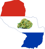 Medical Cannabis Bill Approved by Paraguay Congress