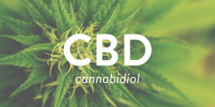 Study Finds CBD has Beneficial Effects in Patients with Schizophrenia
