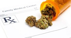 New Hampshire Committee Approves Bill to Protect Medical Marijuana Patients' Data From Federal Agencies