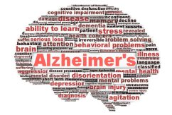 Study: Cannabis has Theurputic Potential in the Treatment of Alzheimer's Disease