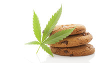 So THAT'S Why Marijuana Gives You The Munchies