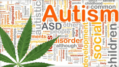 Colorado House and Senate Votes to Add Autism Spectrum Disorders as Qualifying Medical Cannabis Conditions