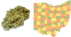 Ohio Ballot Board Certifies Initiative to Legalize Marijuana for Those 21+