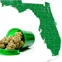Judge Rules Florida's Ban on Smoking Medical Cannabis is Unconstitutional
