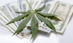 California Senate Approves Bill to Establish Marijuana Banks and Credit Unions