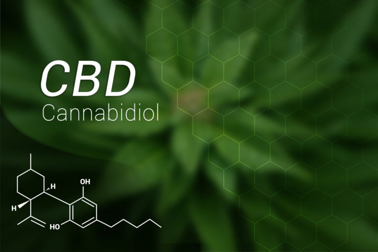 Top Five Things Your CBD Business Needs to Consider