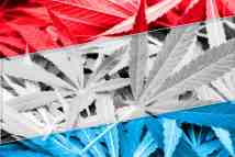Medical Cannabis Legalization Passed Unanimously by Luxembourg Parliament