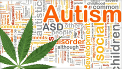 Study: Cannabis May Help Reduce Aggressive Behavior in Autism Patients