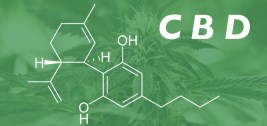 Study: CBD Improves Frequency and Severity of Seizures and Reduces Adverse Events