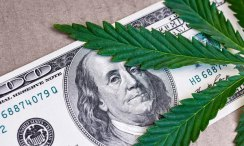 New Jersey Committee Passes Marijuana Banking Resolution