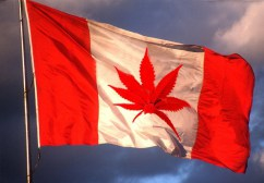 Canada's Marijuana Legalization Law Takes Effect on Wednesday