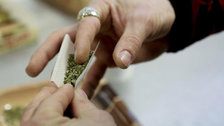 Record-High Number Of Americans Support Legalizing Marijuana