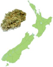 New Zealand Legalizes Medical Marijuana