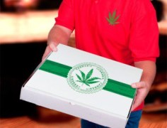 Bipartisan Bill to Legalize Marijuana Deliveries Filed in Washington State