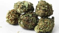 Study: Cannabinoids May Be An Effective Adjunct Treatment for D